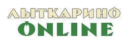 Сайт города Лыткарино